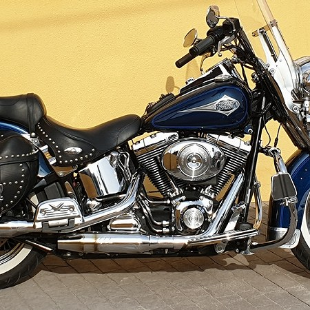 Halrley Softail